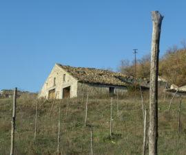 Casolari di campagna in Molise