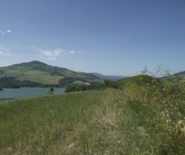 terreno vista lago